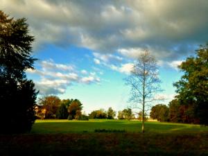 Glorious Sunday morning in Keswick, VA